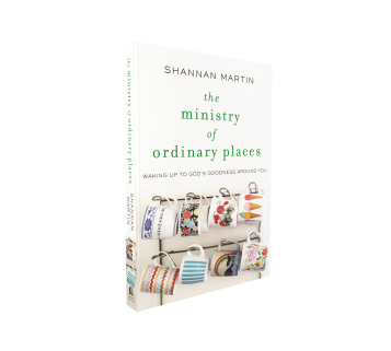 Ministry-of-Ordinary-Places-spine-out-3D